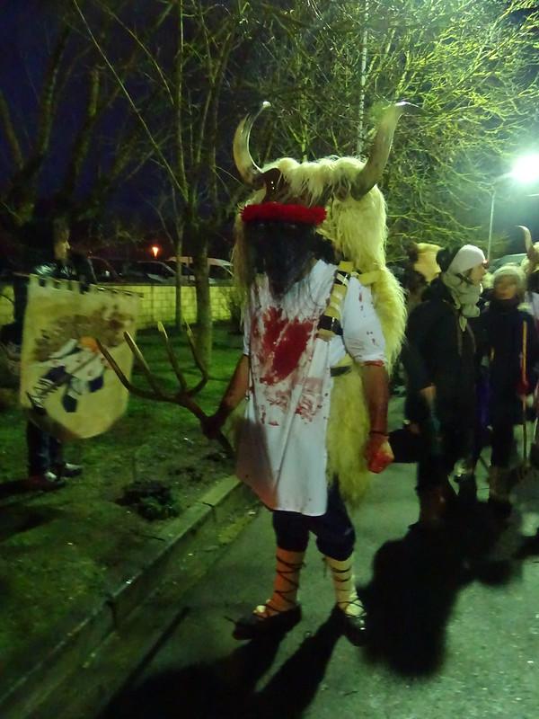 Carnavales 2018 de Alsasua Navarra fotos 16