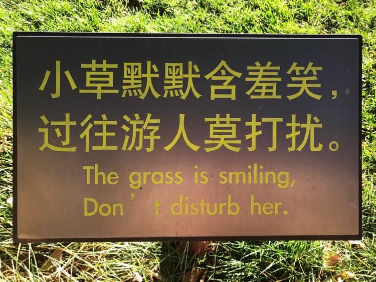 Yunnan Stone Forest