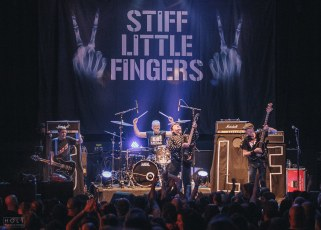 Stiff Little Fingers-9