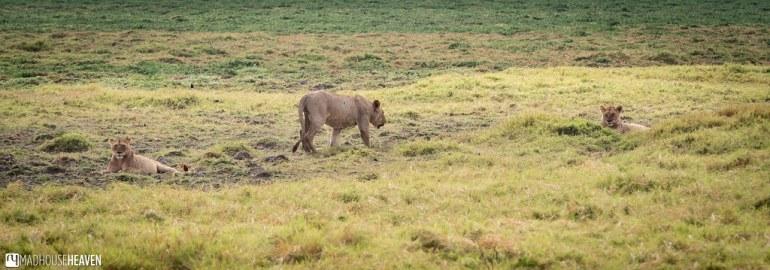 Kenya - 0360