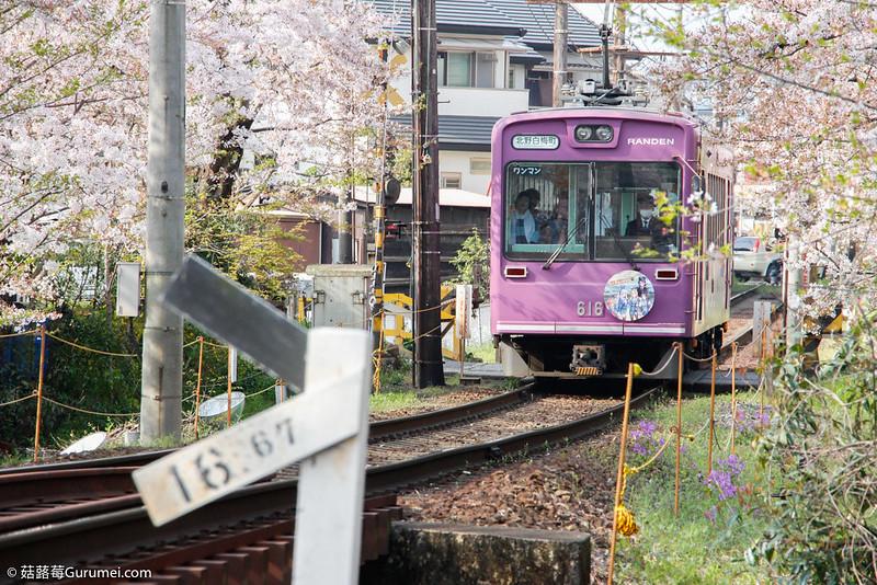 【日本打工度假】美山、天橋立