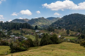 In 2018 was ik weer terug in Colombia, met Lucía reed ik langs dit prachtige landschap tussen Medellin en La Ceja. Mij vielen de witte Yarumo bomen vooral op.