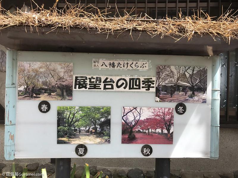 打工度假-賞櫻巡禮-390