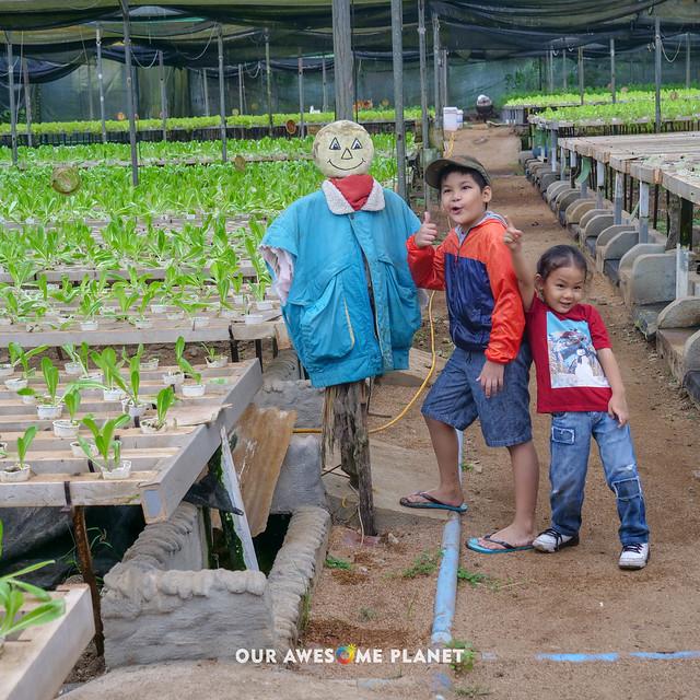 Yoki's Farm 2019-79.jpg