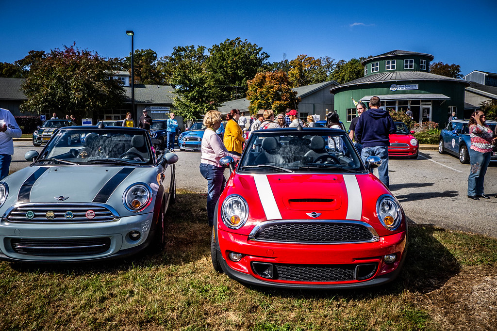Upstate Minis Bulldog Fun Run 2018-008