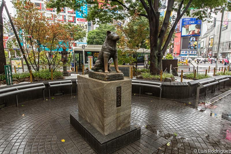 Hachiko, siempre rodeado de gente... menos cuando un tifón sobre Tokio (momento en el que hicimos la foto)