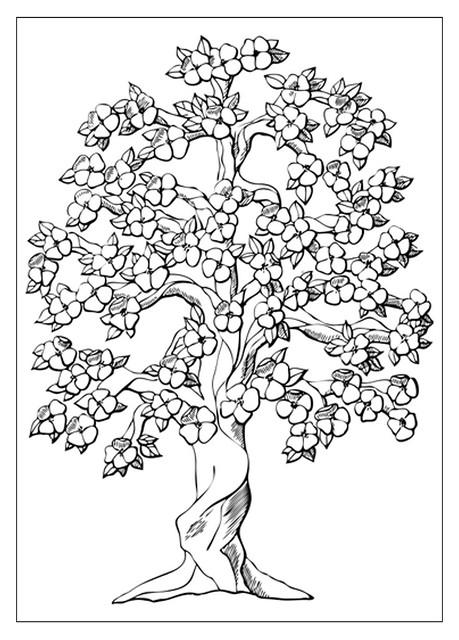 tree to colour 2