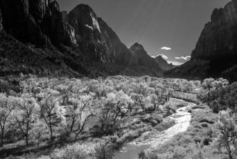Zion Canyon Fall