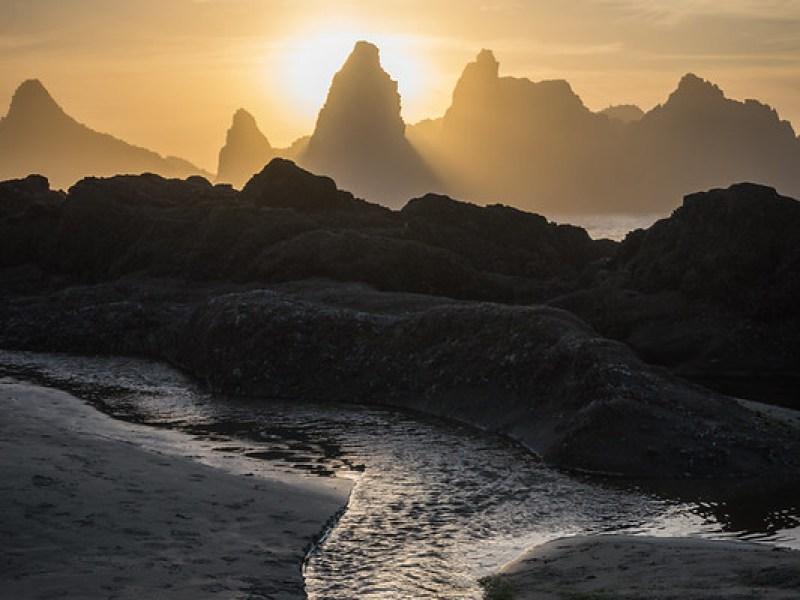 Seal Rock Beach - Sophie Brown
