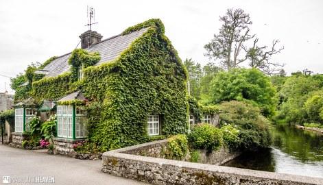 Ireland - 1339