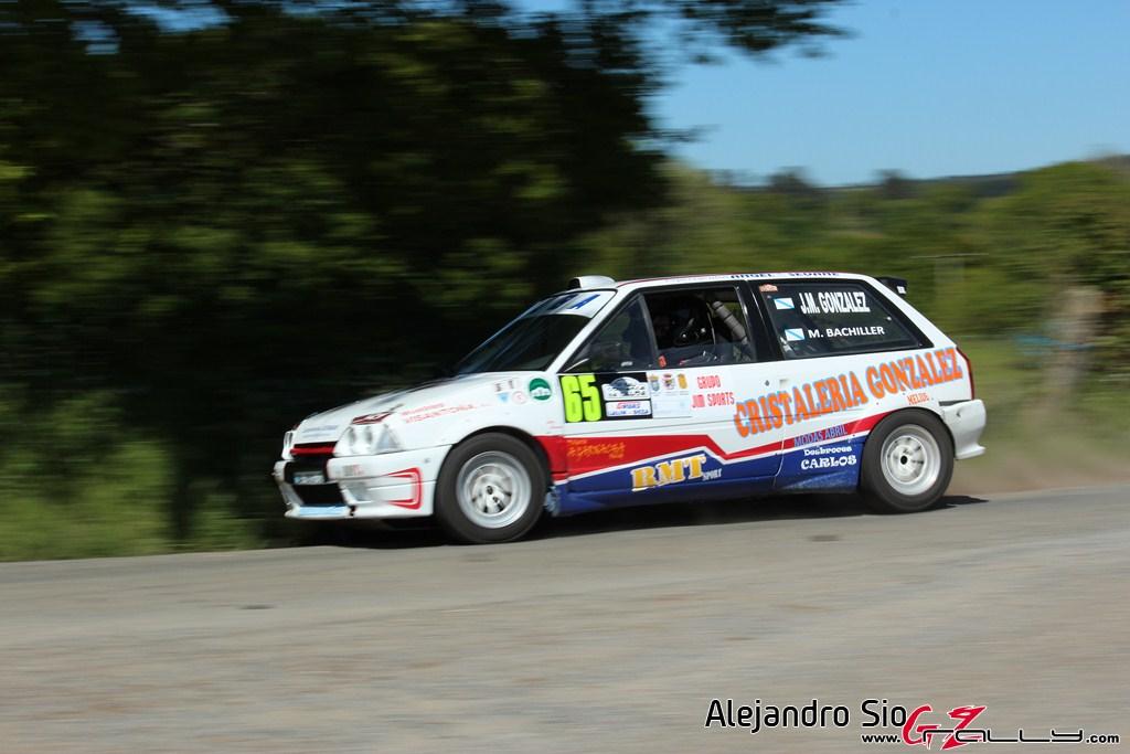 vi_rally_comarca_da_ulloa_30_20150307_2049268257