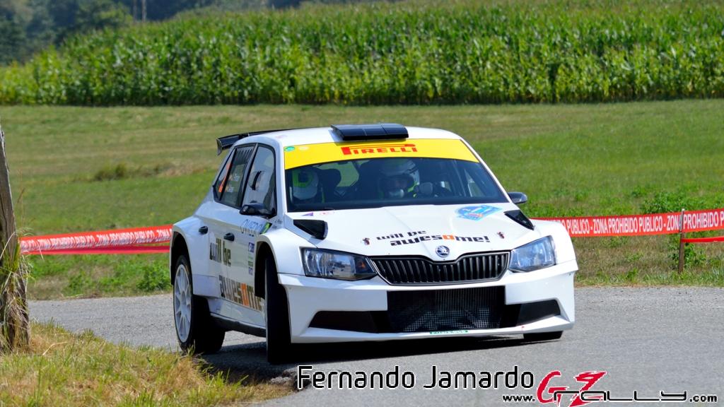 53_rally_princesa_de_asturias_2016_-_fernando_jamardo_1_20160913_1142099362