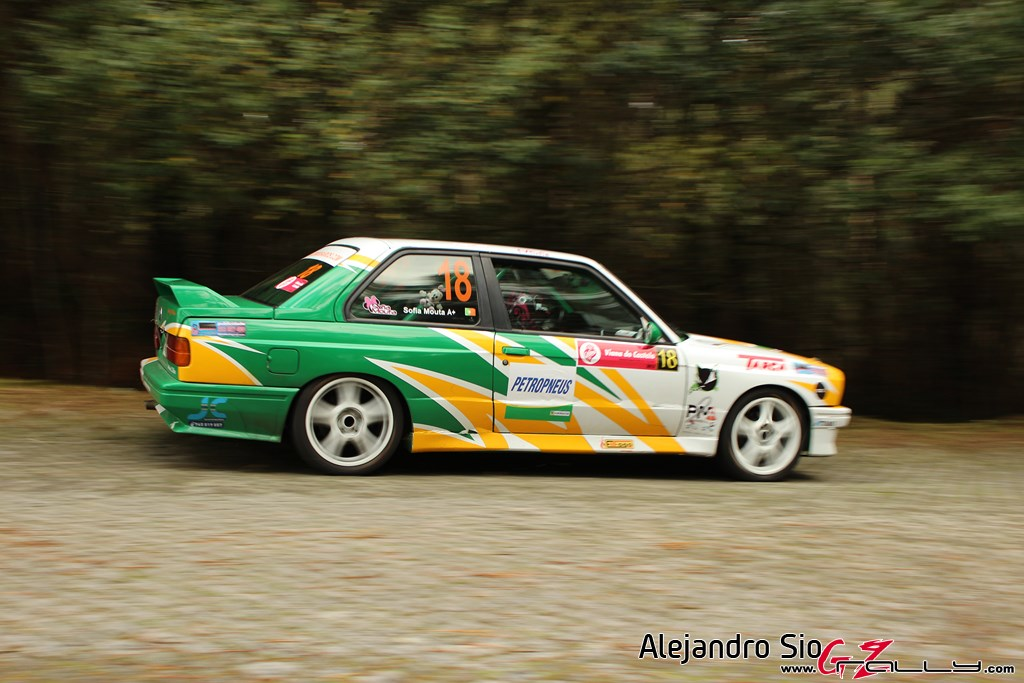 ii_rally_viana_do_castelo_149_20150308_2069763449