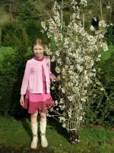 Nina with medium white cherry bundle