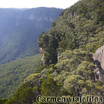 Viajefilos en Australia. Blue Mountains 053