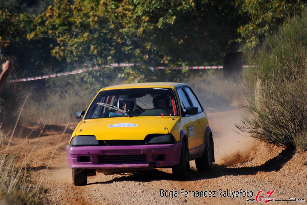 vi_rallysprint_de_tierra_de_sariegos_-_borja_fernandez_2_20161101_1230941603