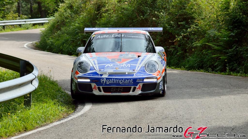 53_rally_princesa_de_asturias_2016_-_fernando_jamardo_5_20160913_2023809451