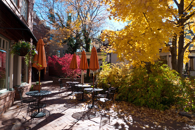 Autumnal Cafe Courtyard