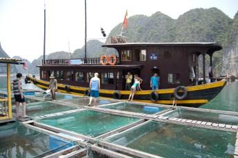 Besuch Pangasius Fischzucht 32