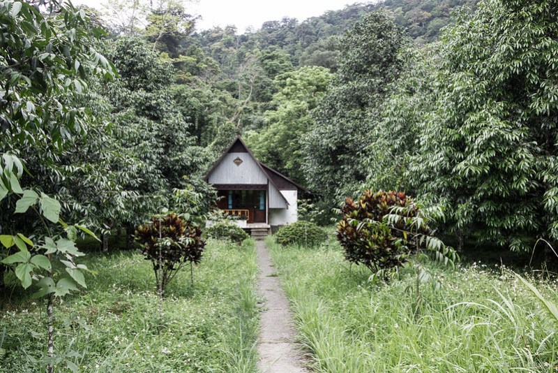 2013-06-05 Abandoned Jungle Resort - DSC04578-FullWM