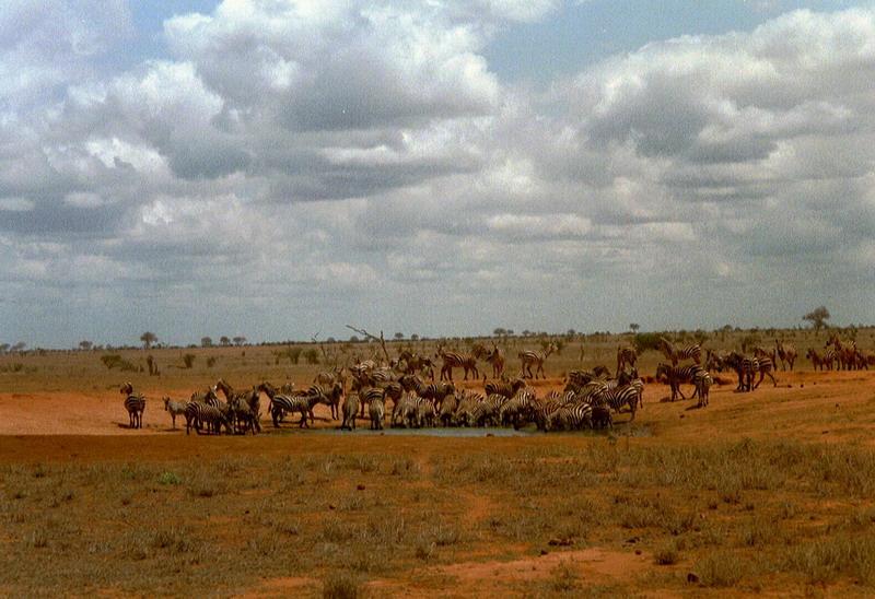 Kenia 2000 - 080