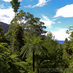 Viajefilos en Australia. Blue Mountains 033