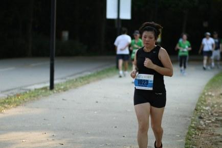 Sculpt Run 2012