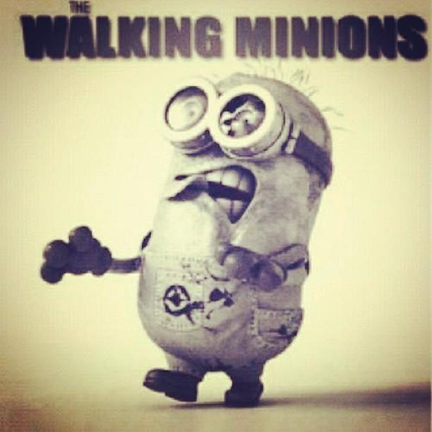Minionszz Walkingdead Minions Minion Walking Zombi Flickr