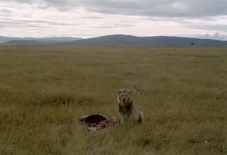 Kenia2002-09-17