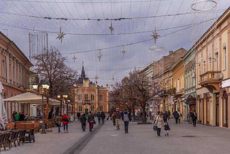 Novosadski