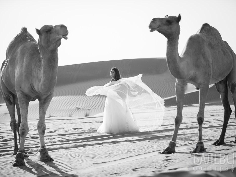Lily_Vlady_Dubai-4