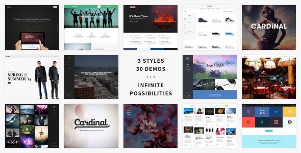 Cardinal - Themeforest Premium WordPress Theme ver 1.90
