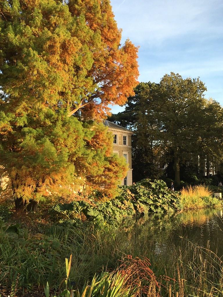 Autumn / Fall 2015 at Kew Gardens, Richmond, London