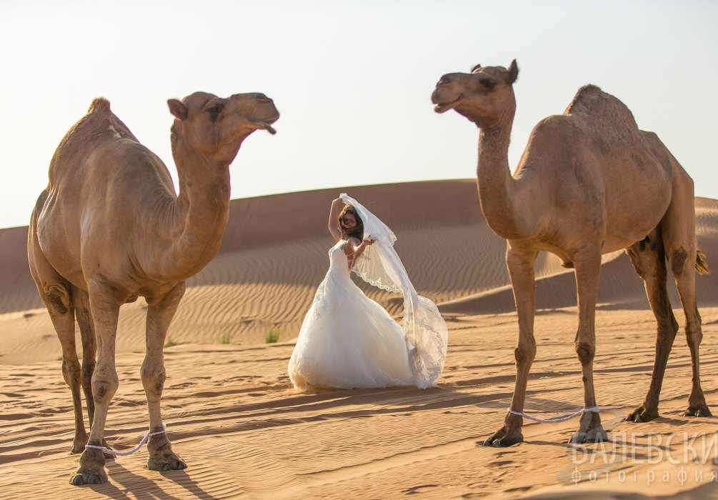 Lily_Vlady_Dubai-3