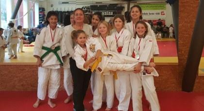 Judo BMM 2015 Final