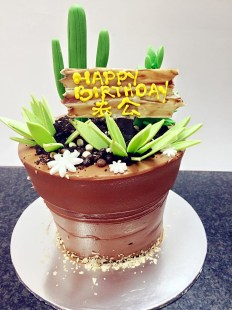 pot birthday cake