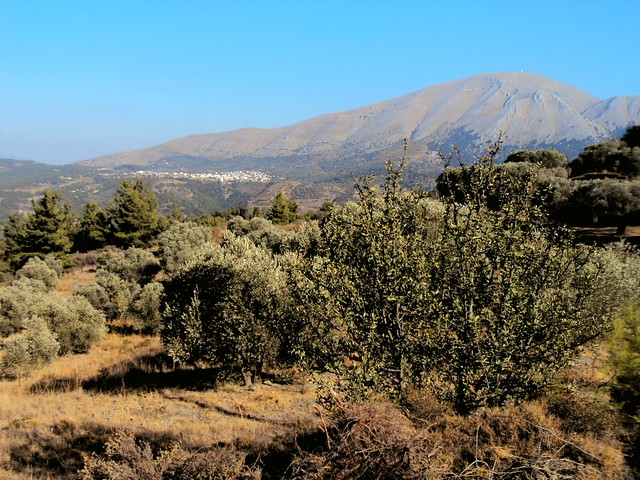 At about 1200m, that's the highest mountain on Rodos. by bryandkeith on flickr