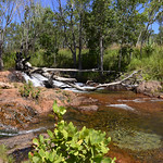 04 Viajefilos en Australia, Litchfield NP 008
