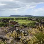 02 Viajefilos en Australia, Kakadu NP 024