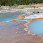 55- Yellowstone