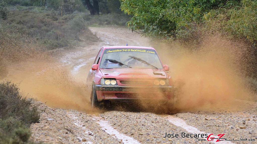iii_rallysprint_de_sariegos_72_20150308_1041943677