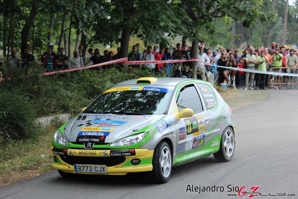 x_rally_sur_do_condado_77_20150307_1161874078