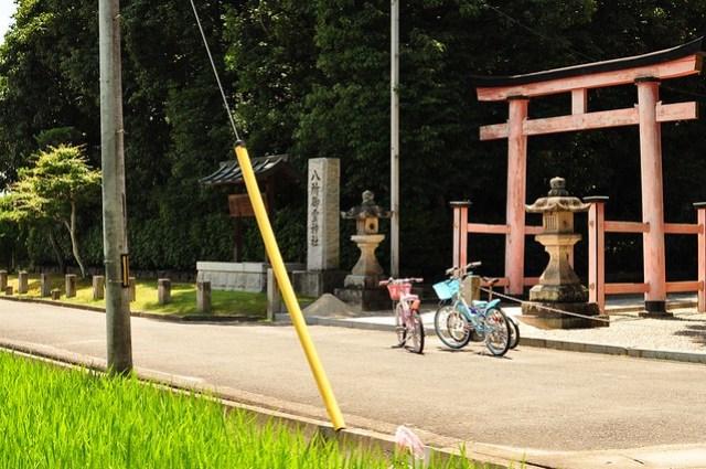 @Akishino-dera temple, Nara, 秋篠寺