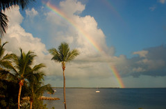 Key Largo Rainbow 2