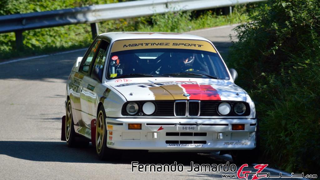 53_rally_princesa_de_asturias_2016_-_fernando_jamardo_197_20160913_1864235948