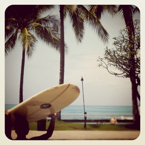 Perfect Surf Day 
