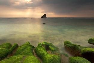 Green Day | Nasugbu Batangas