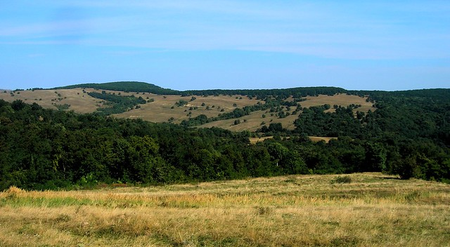 The hilly parts of Transylavnia reminded me of Northern California by bryandkeith on flickr