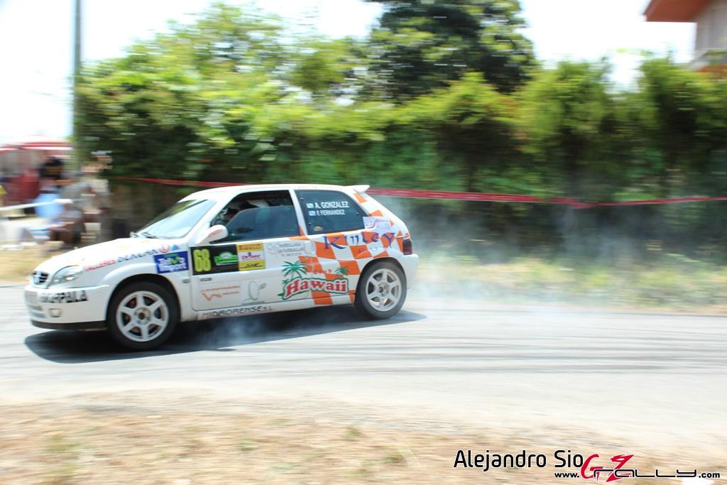 x_rally_sur_do_condado_103_20150307_1854434482