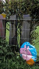 Poor Peppa Pig